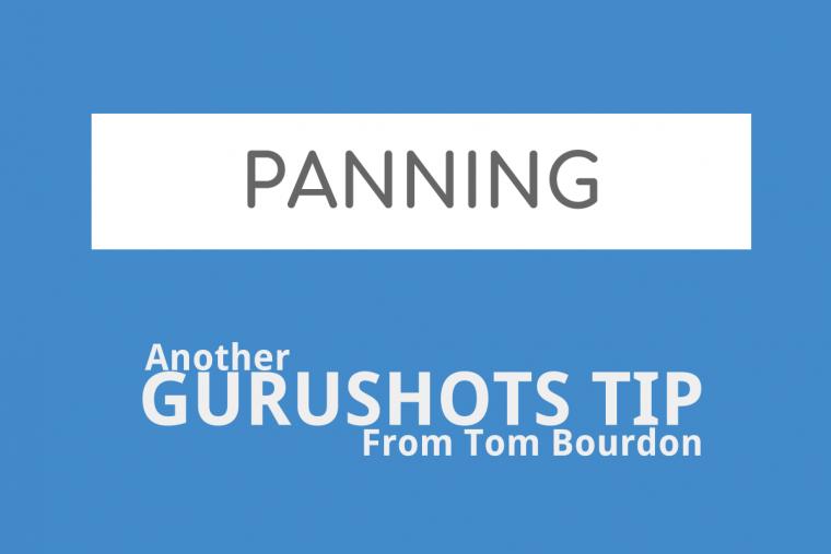 Gurushots Tips – Panning